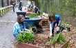 Piedmont Natural Gas employees doing volunteer work on a park trail